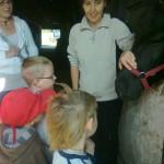spotkanie z Harrym w Stajni